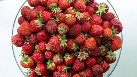 Joka päivä syötynä mansikka suojelee aivoja ja lyhytkestomuistia.