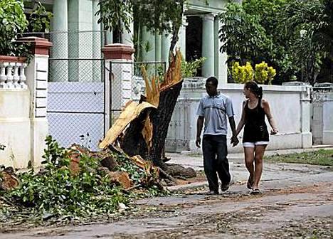 Puut ovat kaautuneet Paula-myrskyssä Havannassa.