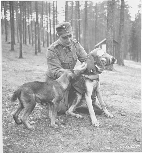 Myös koirat käyttivät kaasunaamareita.