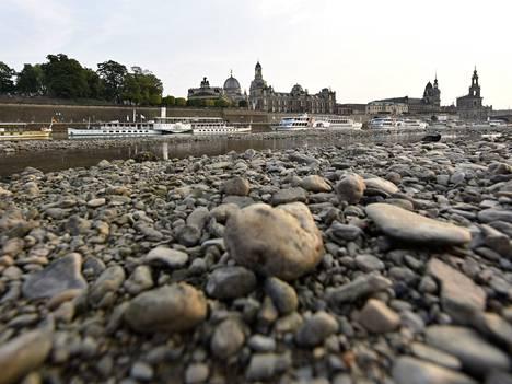 Helteet ovat johtaneet Elbe-joen pinnan laskuun Saksan Dresdenissä.