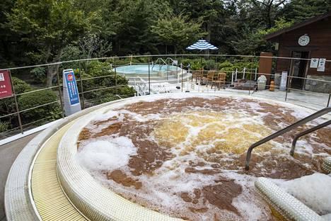 Kylpylän pihalla taas on mineraaliallas ja käynti japanilaiseen puutarhaan.