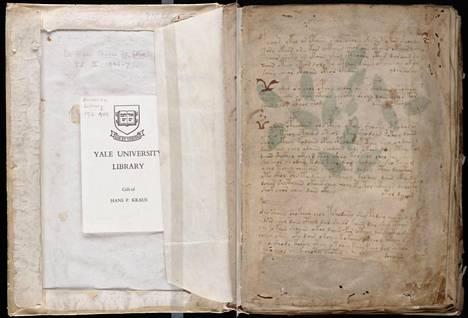 Voynichin käsikirjoituksen alkuperäinen kappale löytyy Yalen yliopiston kirjastosta.