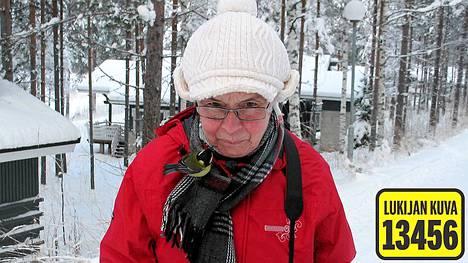 Äkäinen talitintti hyökkäili kävelyllä olleen Kaarina Sillanpään kimppuun.