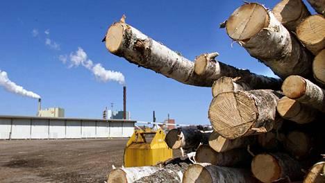 Stora Enson Veitsiluodon tehtaiden satamassa puretaan laivasta tuontipuuta.