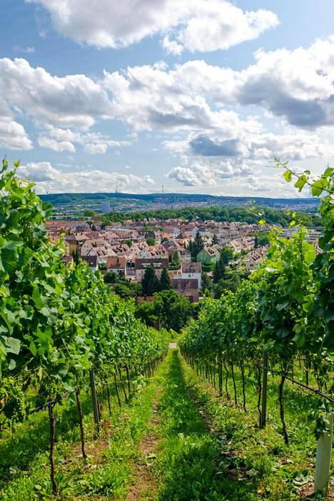 Keskustan sivuistoilta kohoavilla rinteillä viljellään viiniä.