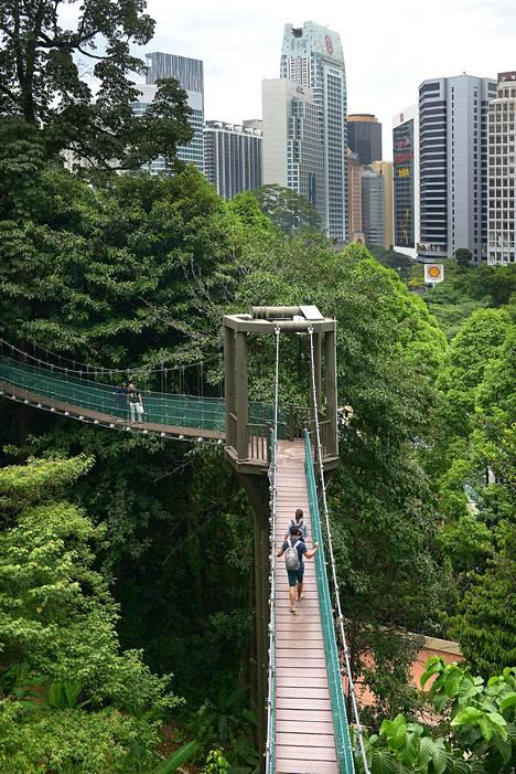 KL Eco Forest Parkissa pääsee sademetsämiljööseen keskellä metropolia.