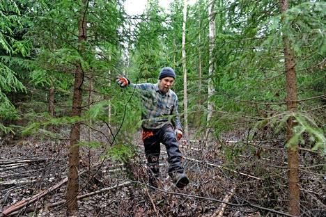 Edellisen metsänomistajan jäljiltä harvennustöitä on jäänyt rästiin. Siinä riittää työsarkaa pitkälle tulevaisuuteen. Oma metsä antaa mahdollisuuden panna koulun oppeja käytäntöön.