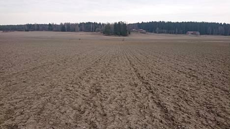 Kallelan pelloilla viljellään kaaleja, sokerimaissia, kurpitsaa ja viljaa.