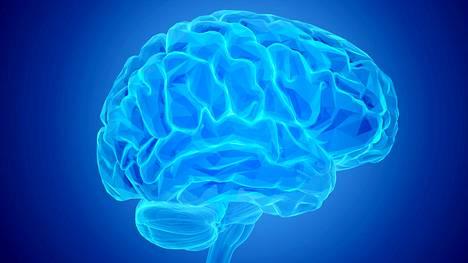 Ihmisen aivot kuvituskuvassa.