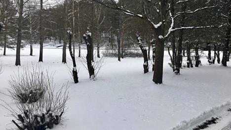 Turkulaisten pihat peittyivät yli 10-senttiseen lumikerrokseen.