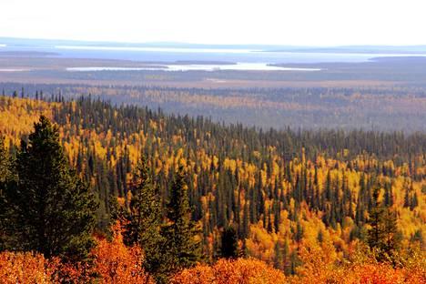 Suomea hehkutetaan jälleen matkailumaana. Forbes kehottaa matkustamaan syksyllä Lappin.