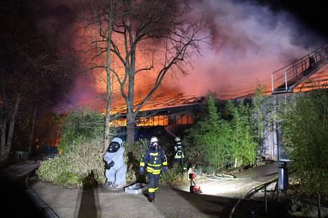 Liekit löivät korkealle palavasta apinatalosta, kun pelastuslaitoksen yksiköt saapuivat paikalle.