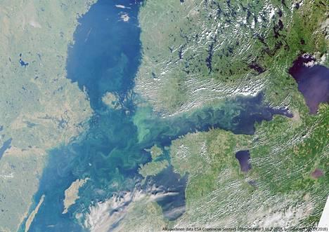 Tällainen oli Itämeren sililevätilanne 16. heinäkuuta 2018. Kuvan on ottanut Euroopan avaruusjärjestön satelliitti.