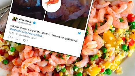 Ruotsalainen Magnus koki hämmennyksen hetkiä, kun katkarapusalaatti hehkui sinertävää valoa, kertoo Aftonbladet. Kuvituskuva.