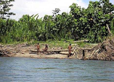 Laittomat metsähakkuut ovat ajaneet Mascho-Piro-intiaaniheimon jäseniä heidän asuinalueiltaan Kaakkois-Perussa.