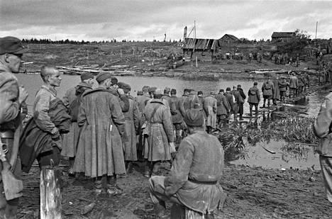 Neuvostoliittolaisia sotavankeja kuvattuna syyskuussa 1941. Kuva on Aunuksen läheltä Tuuloksen kylästä.