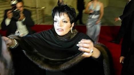Liza Minnellin tv-spesiaali on palkittu neljällä Emmyllä.