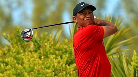 Voisiko Tiger Woods palata vielä golfkentälle? Arkistokuva.