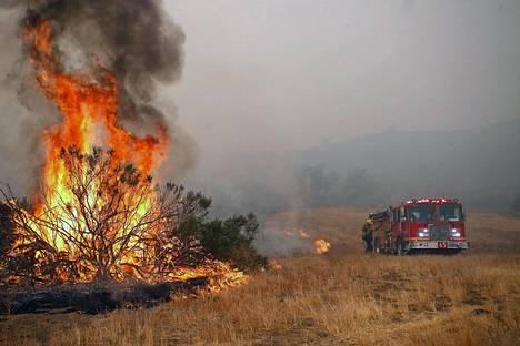 Palomiehet sammuttavat metsäpaloa Kaliforniassa. Kuivuuden ja voimakkaiden tuulten lietsomat metsäpalot ovat polttaneet marraskuun aikana jo yli 400 neliökilometriä.