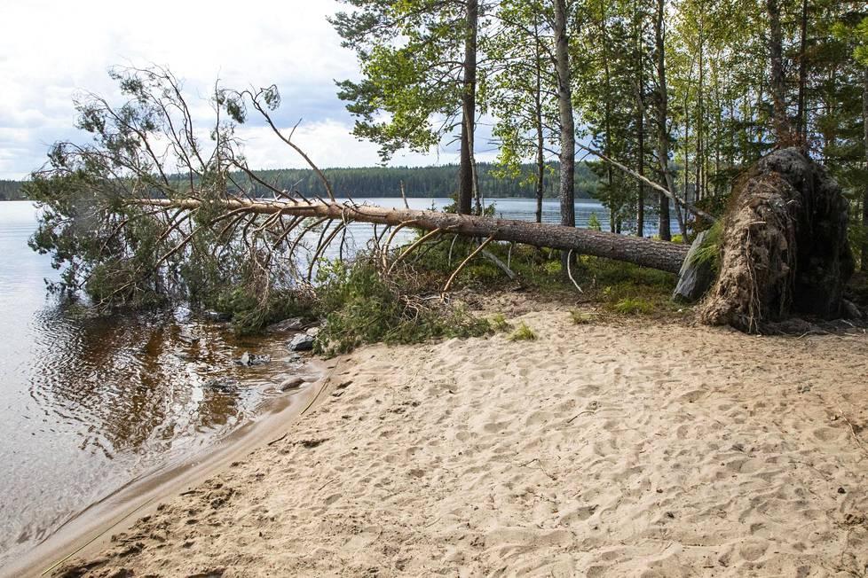 Paratiisisaarella on myös oma ranta. Juuri ennen kuvauksia riehunut myrsky kaatoi puun, joka jätettiin rantaan muistoksi.