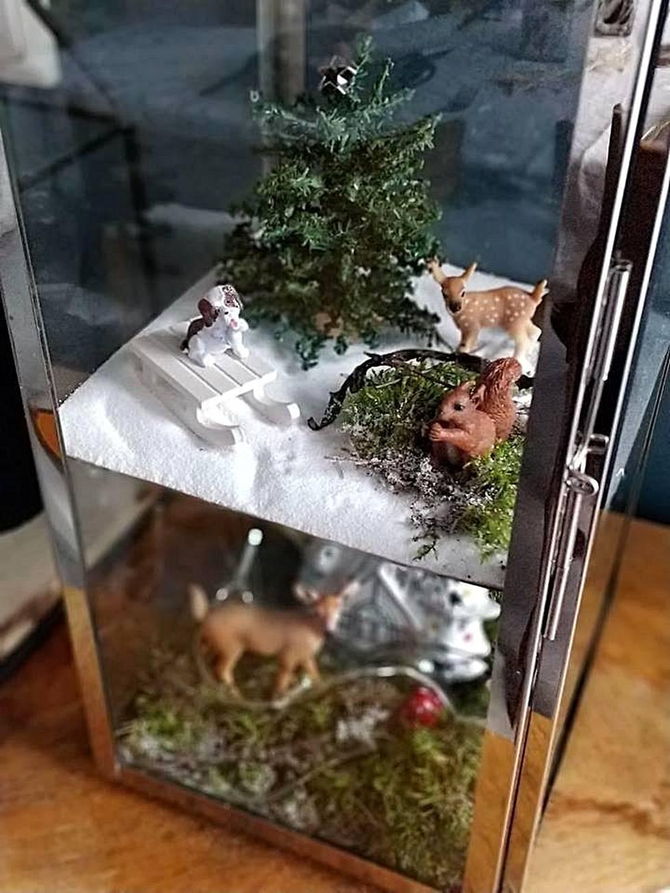 Sisustussuunnittelijan mukaan miniatyyripuutarhat ovat tämän joulun sisustustrendi. –Asetelman voi tehdä vaikka lyhtyyn tai lasikuvun alle.