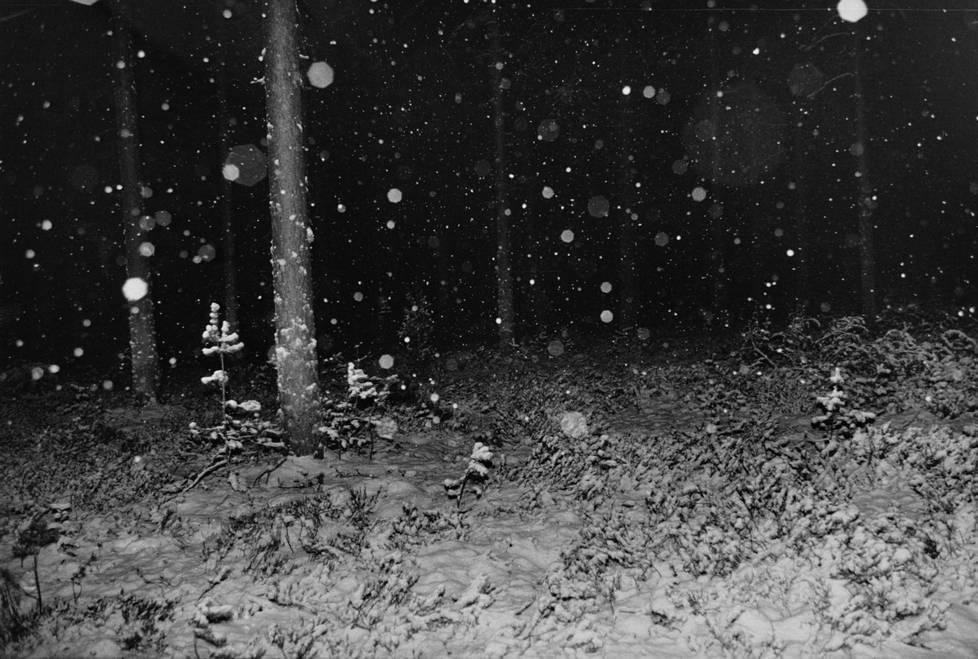 """""""Illansuussa löytynyt ruumis lienee tuotu löytöpaikalleen autolla, jonka jälkeen se oli piilotettu metsään parinkymmenen metrin päähän maantiestä"""", kertoo alkuperäinen kuvateksti."""