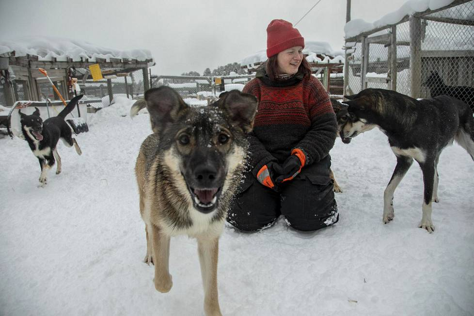 Vaasalaislähtöinen Piita Koski on hoitanut huskyja yli kymmenen vuotta.