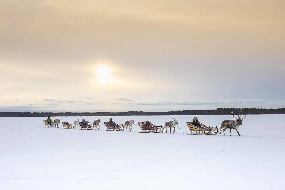 Pororaito etenee huikaisevan kauniissa erämaan maisemassa jossain päin Pohjois-Pohjanmaata.