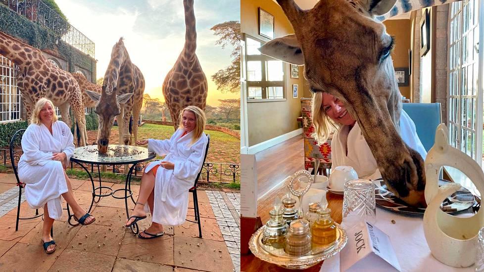 Keniassa sijaitseva Giraffe Manor -hotelli on kuuluisa alueellaan vaeltavista kirahveista.
