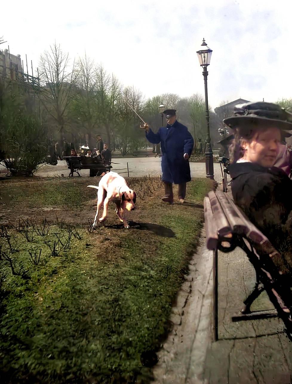 Puistovahti Andrejeff Hait hätistää koiraa Helsingin Esplanadilla vuonna 1908.