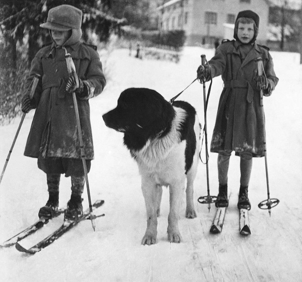 Kaari Utrio veljensä Pirkan ja Leka-koiran kanssa isovanhempien luona Mikkelissä 1950.