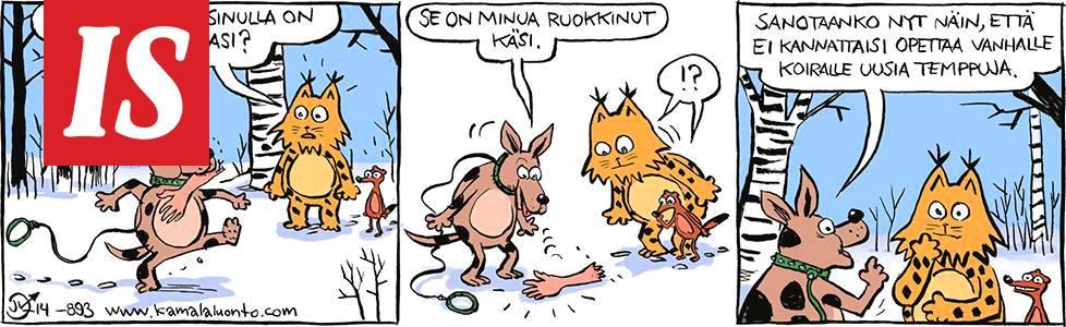 Sarjakuvat Suomessa