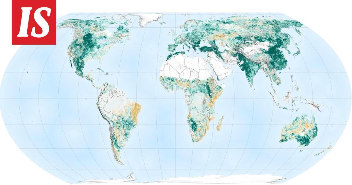 Nasa Teki Yllattavan Havainnon Maailman Metsista Maapallo Onkin