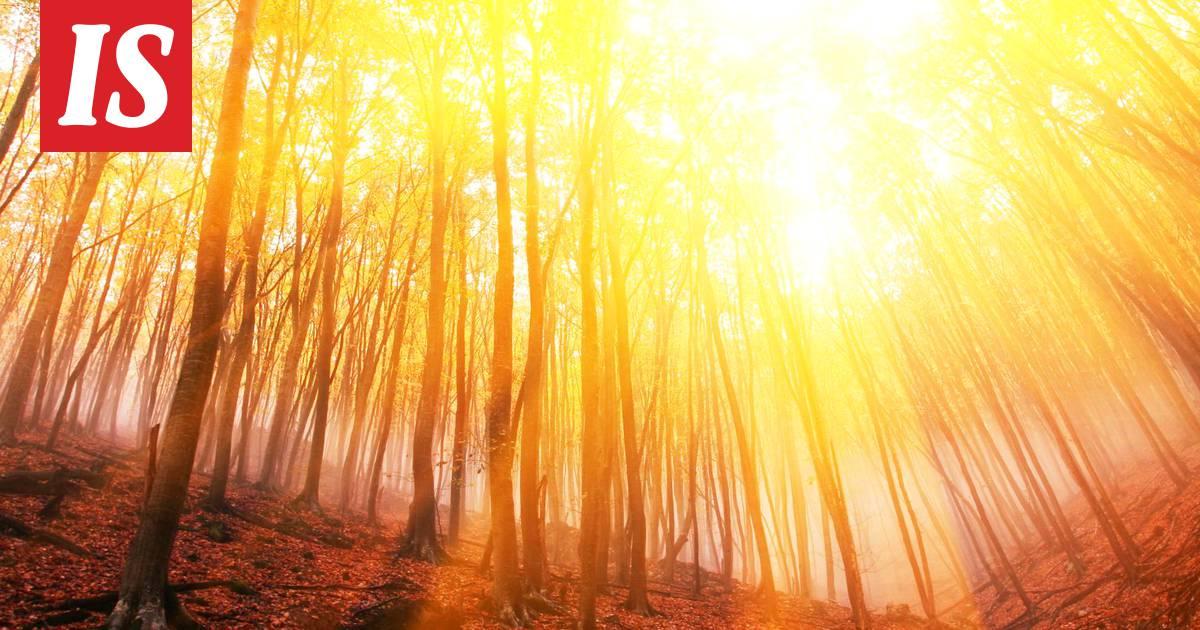 Neljä ideaa ruskaretkelle Suomen luonnossa