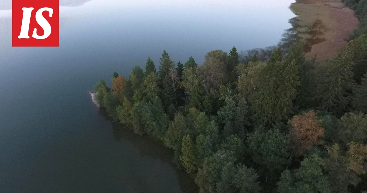 Bodom Järven Murha